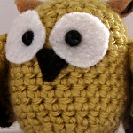 Baby Owl All Done